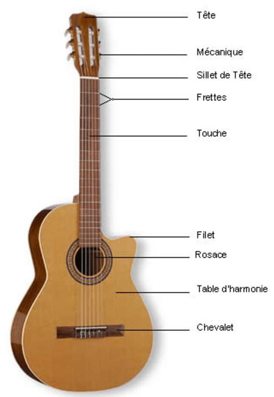 partie-d-une-guitare